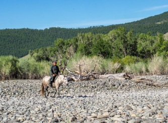 bringing horses from the river