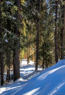 adventuresofacouchsurferbreckenridgeIMG_6254-6254