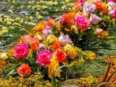 flowers in the cross carpet