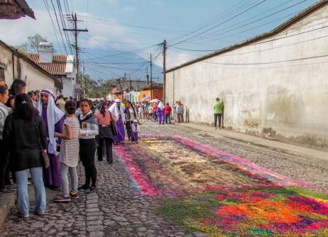 carpet after La Merced Procession