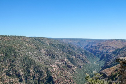 Dolores Canyon Overlook
