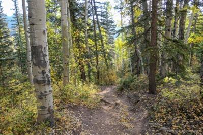 Purgatory Creek Trail